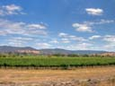 big sky country | Yarra Valley vineyards [HDR1] | January 2009